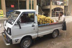 Bananas in Pakistan